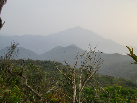 2010.1.10稲尾岳 (9)s