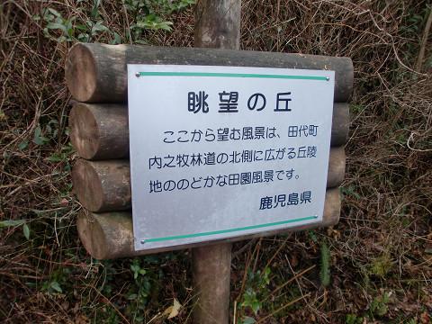 2010.1.10稲尾岳 (32)s
