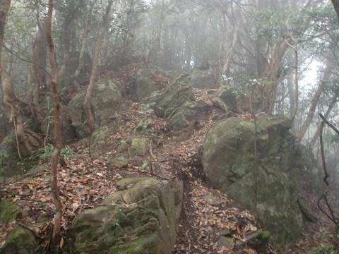 2010.1.11矢筈岳 (1)s