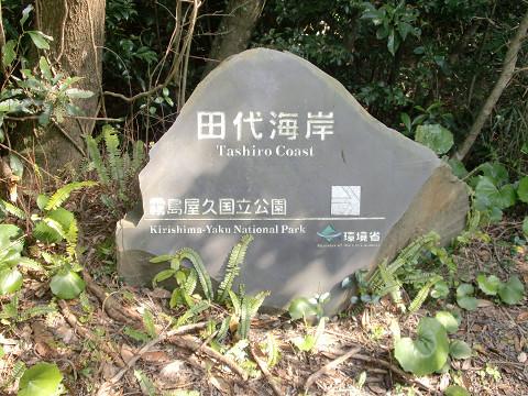 2010.3.22モッチョム岳 (80)s