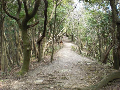 2010.3.27八郎岳 (2)s