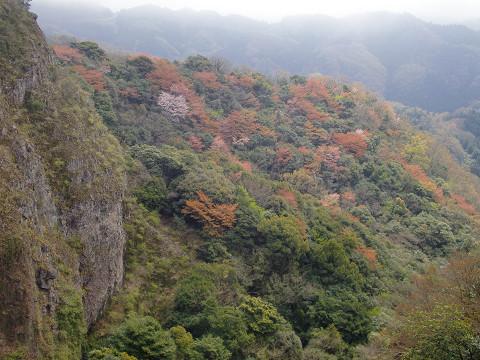 2010.4.10津波戸山 (46)s