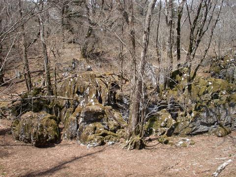 2010.4.18白鳥山 (9)s