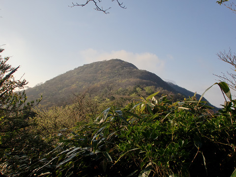 2010.4.24大箆柄岳 (9)s