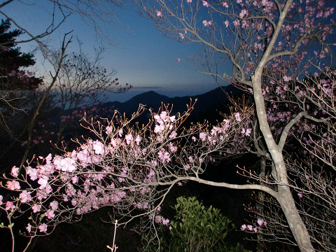 2010.4.29夏木山 (1)s