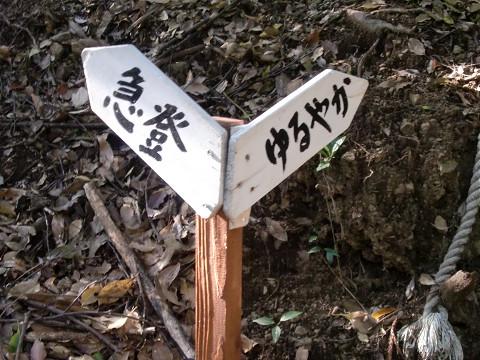2010.4.29元越山 (3)s