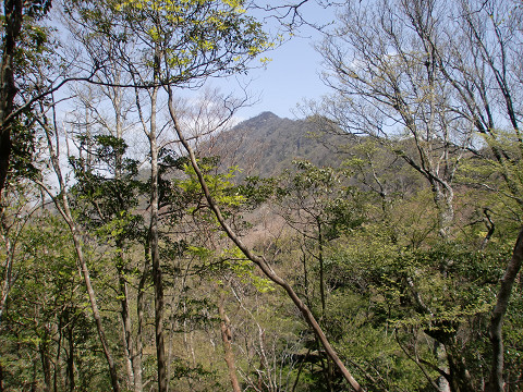 2010.5.3石堂山 (4)s