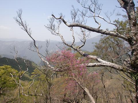 2010.5.3石堂山 (9)s