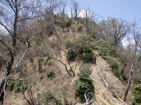 2010.5.3石堂山 (25)s