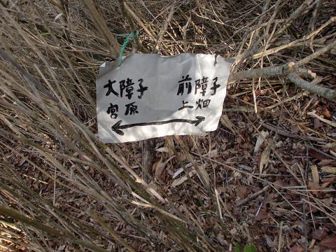 2010.5.16大障子岩 (9)s