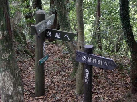2010.5.29虚空蔵山 (4)s