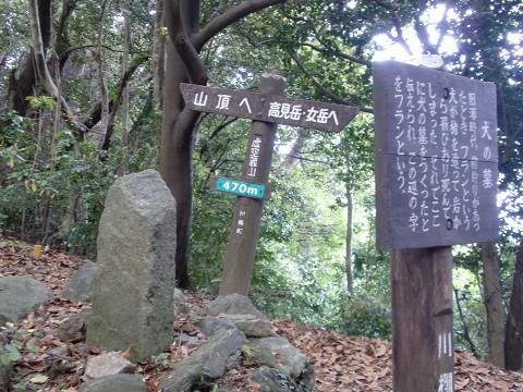 2010.5.29虚空蔵山 (3)s