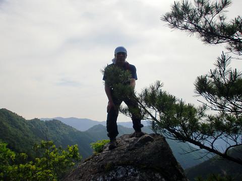 2010.6.6扇山 (6)s