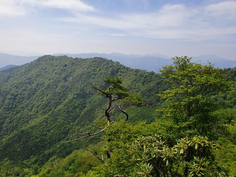 2010.6.6扇山 (15)s