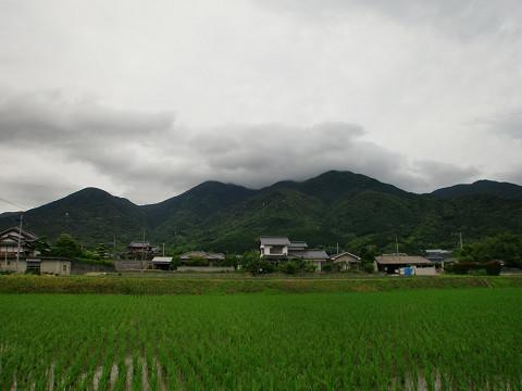 10.6.20福智山 (37)s