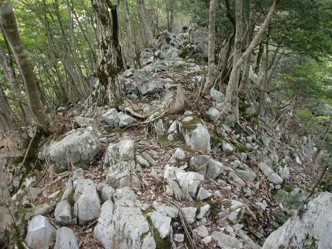 2010.9.26上福根山 (5)s