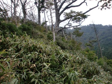 2010.9.26上福根山 (36)s