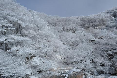 10.12.26大船山 (73)s