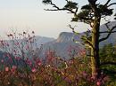 10.4.29夏木山