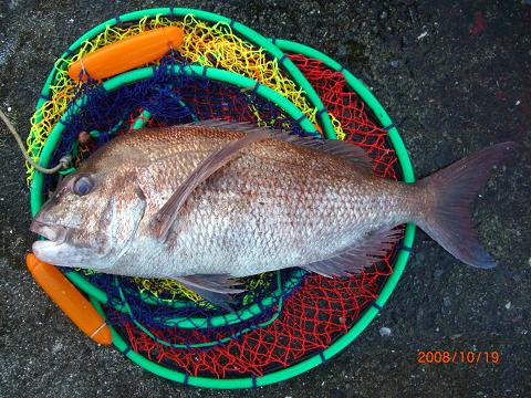 釣り (12)