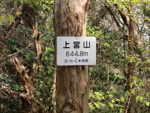 11.4.30上宮山 (4)s