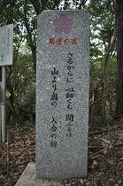 石碑 (6)s