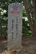 石碑 (9)s