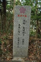 石碑 (8)s