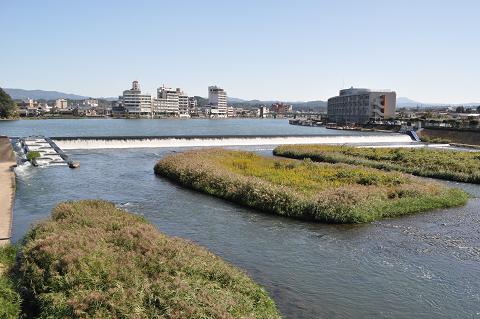 三隈川 (6)