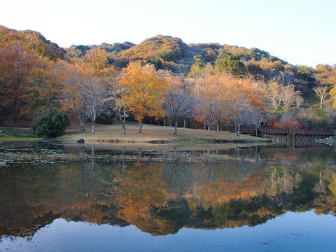 萩尾公園 (8)
