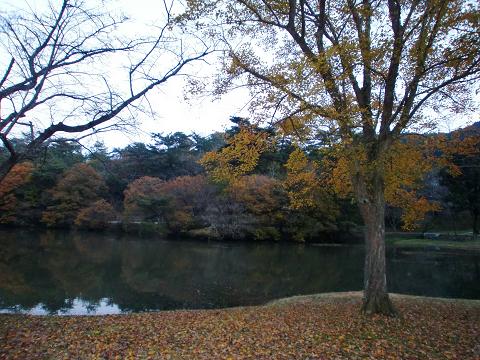 萩尾公園 (25)