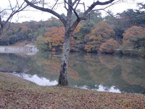 萩尾公園 (24)