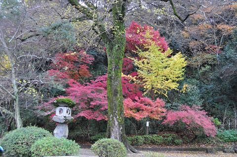 亀山公園 (5)