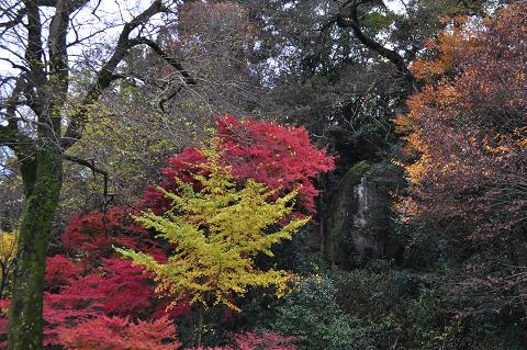 亀山公園 (6)
