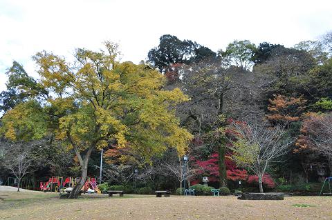 亀山公園 (7)