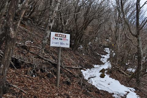鶴見岳 (6)