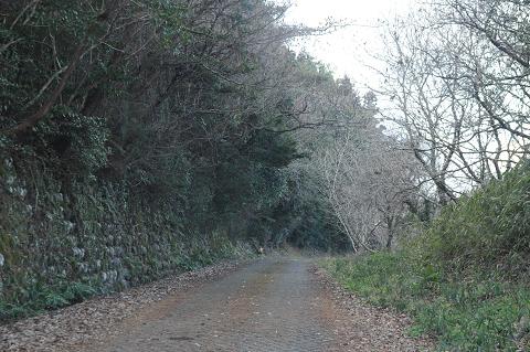 12.1.23高井岳 (2)