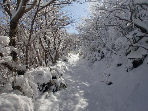 沓掛山 (6)