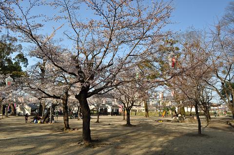 亀山公園 (4)