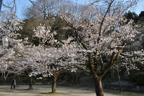 亀山公園 (2)