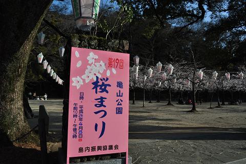 亀山公園 (1)