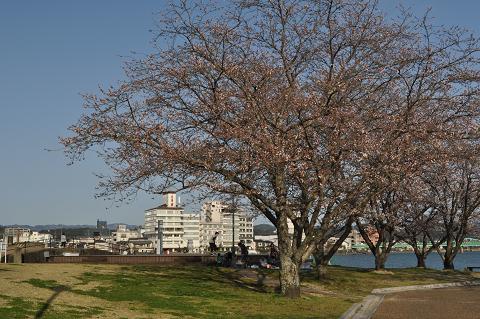 中ノ島 (3)