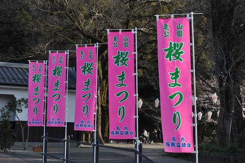 亀山公園 (8)