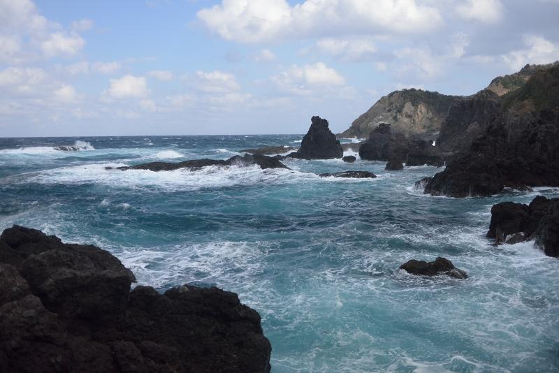大島 (48)