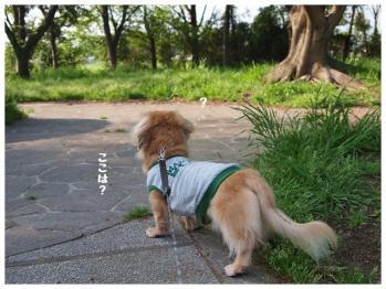2012GW帰省-2