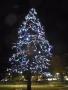 千葉工業大学 千葉工 クリスマス イルミネーション 2013