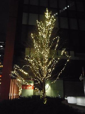 万世橋 クリスマス イルミネーション 2013