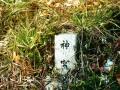 神麻続機殿神社04