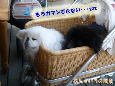 デリバリースタイルP2太宰府店