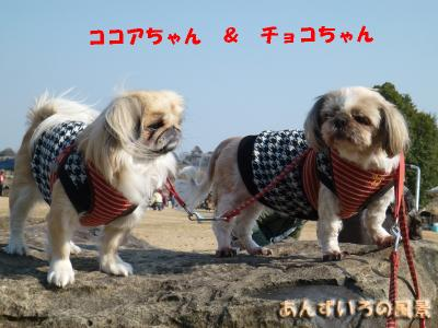 OW吉野ヶ里歴史公園
